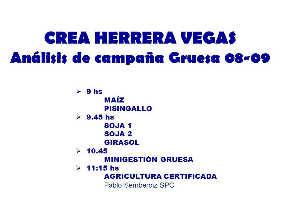 CREA HERRERA VEGAS Análisis de campaña Gruesa 08-09 9 hs MAÍZ PISINGALLO 9.45 hs SOJA 1 SOJA 2 GIRASOL 10.45 MINIGESTIÓN GRUESA 11:15 hs AGRICULTURA C