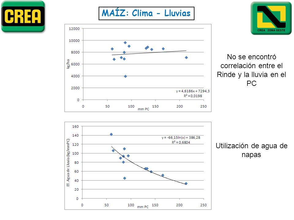 MAÍZ: Clima - Lluvias No se encontró correlación entre el Rinde y la lluvia en el PC Utilización de agua de napas