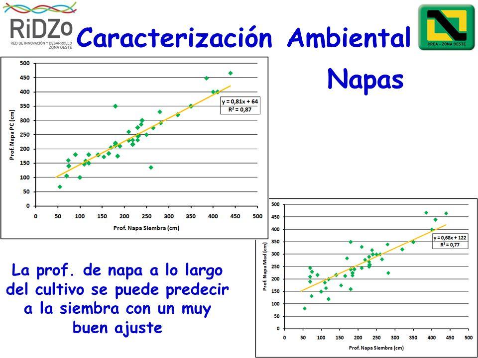 Caracterización Ambiental La prof. de napa a lo largo del cultivo se puede predecir a la siembra con un muy buen ajuste Napas