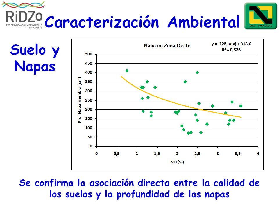 Caracterización Ambiental Se confirma la asociación directa entre la calidad de los suelos y la profundidad de las napas Suelo y Napas