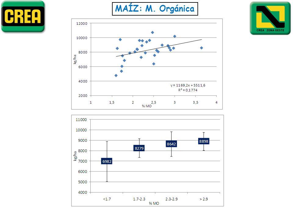 MAÍZ: M. Orgánica