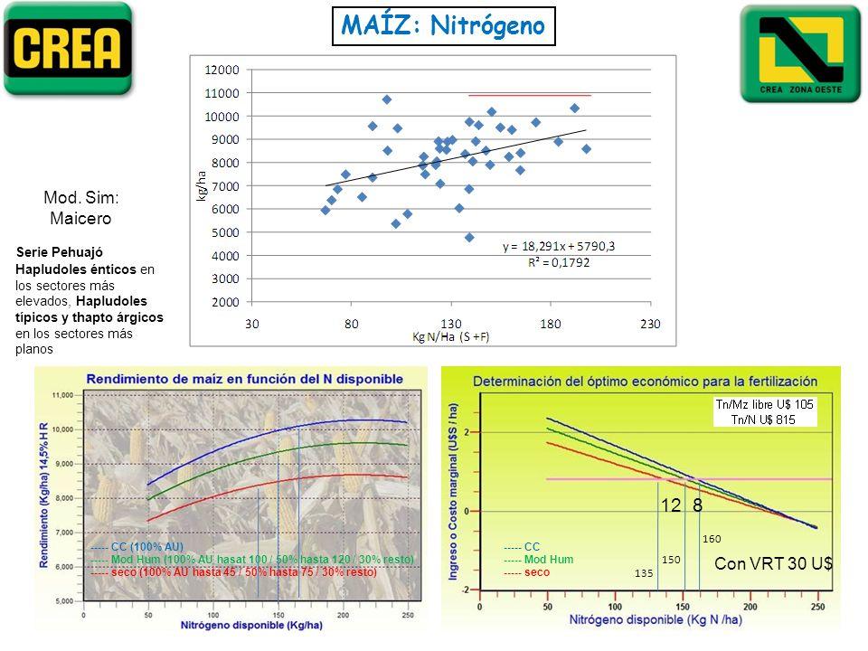 MAÍZ: Nitrógeno ----- CC ----- Mod Hum ----- seco ----- CC (100% AU) ----- Mod Hum (100% AU hasat 100 / 50% hasta 120 / 30% resto) ----- seco (100% AU