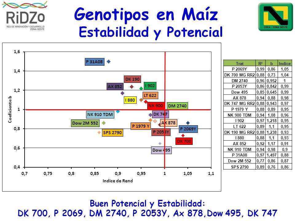 Genotipos en Maíz Buen Potencial y Estabilidad: DK 700, P 2069, DM 2740, P 2053Y, Ax 878,Dow 495, DK 747 Estabilidad y Potencial TratR²bIndice P 2069Y
