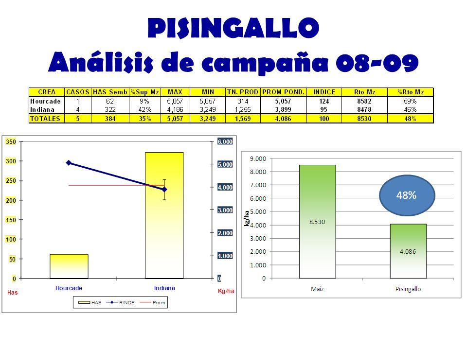 PISINGALLO Análisis de campaña 08-09 48%