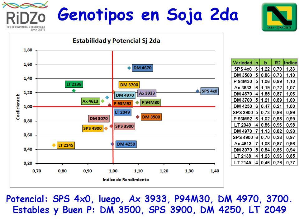 Genotipos en Soja 2da Potencial: SPS 4x0, luego, Ax 3933, P94M30, DM 4970, 3700. Estables y Buen P: DM 3500, SPS 3900, DM 4250, LT 2049 VariedadnbR2In