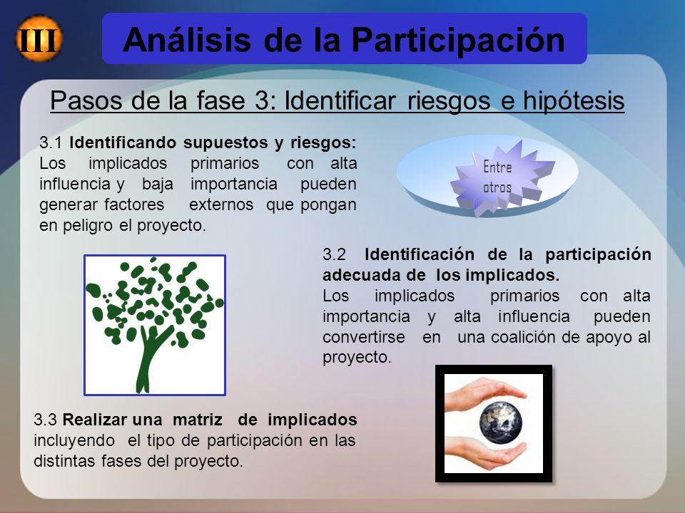 Análisis de la Participación Pasos de la fase 3: Identificar riesgos e hipótesis 3.2 Identificación de la participación adecuada de los implicados. Lo