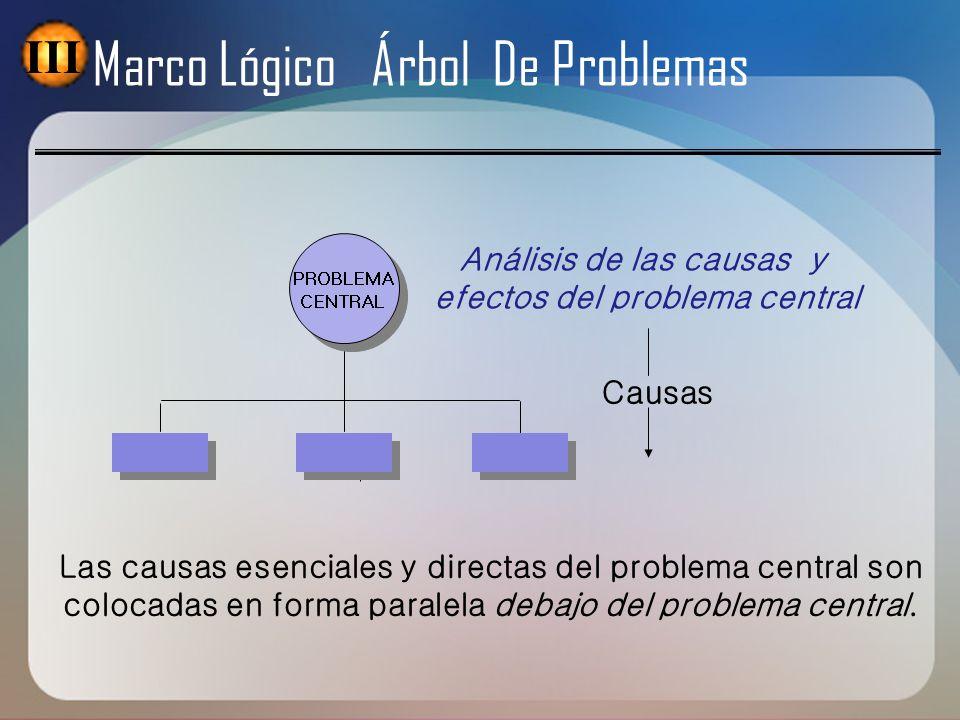 Causas PROBLEMA CENTRAL PROBLEMA CENTRAL Análisis de las causas y efectos del problema central Las causas esenciales y directas del problema central s