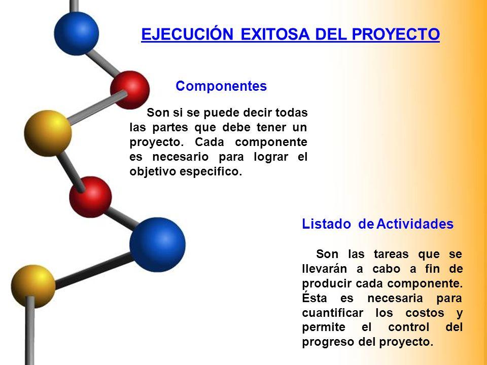 EJECUCIÓN EXITOSA DEL PROYECTO Componentes Son si se puede decir todas las partes que debe tener un proyecto. Cada componente es necesario para lograr
