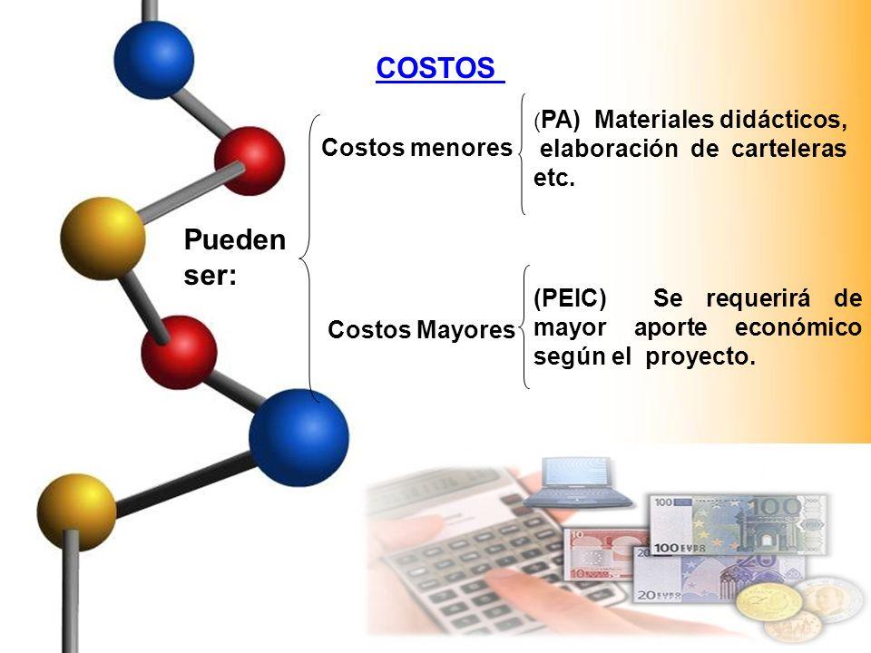 COSTOS Pueden ser: Costos menores ( PA) Materiales didácticos, elaboración de carteleras etc. Costos Mayores (PEIC) Se requerirá de mayor aporte econó