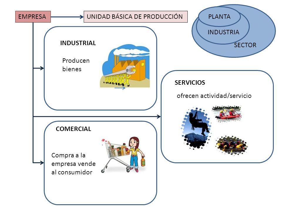 EMPRESAUNIDAD BÁSICA DE PRODUCCIÓN SECTOR PLANTA SECTOR INDUSTRIA INDUSTRIAL ofrecen actividad/servicio Producen bienes COMERCIAL Compra a la empresa