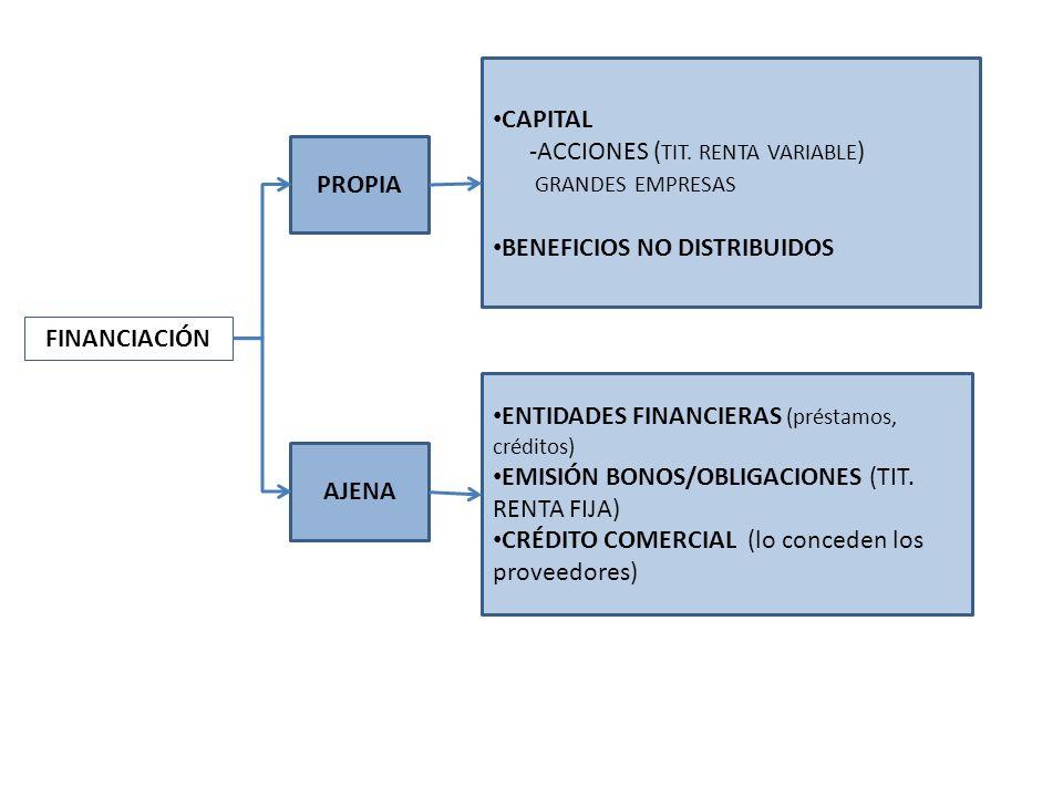 FINANCIACIÓN PROPIA AJENA CAPITAL -ACCIONES ( TIT. RENTA VARIABLE ) GRANDES EMPRESAS BENEFICIOS NO DISTRIBUIDOS ENTIDADES FINANCIERAS (préstamos, créd