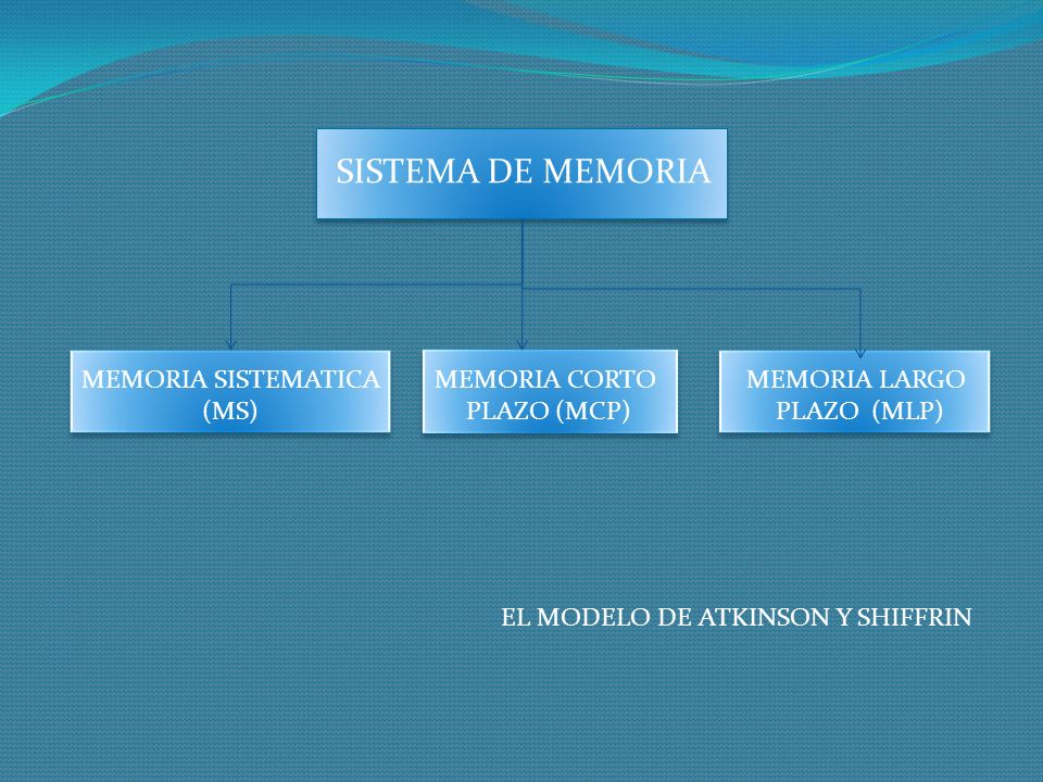 MEMORIA SISTEMATICA (MS) MEMORIA CORTO PLAZO (MCP) MEMORIA LARGO PLAZO (MLP) SISTEMA DE MEMORIA EL MODELO DE ATKINSON Y SHIFFRIN