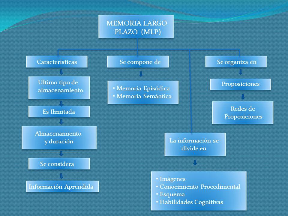 MEMORIA LARGO PLAZO (MLP) Ultimo tipo de almacenamiento Características Es Ilimitada Almacenamiento y duración Se considera Información Aprendida Se o