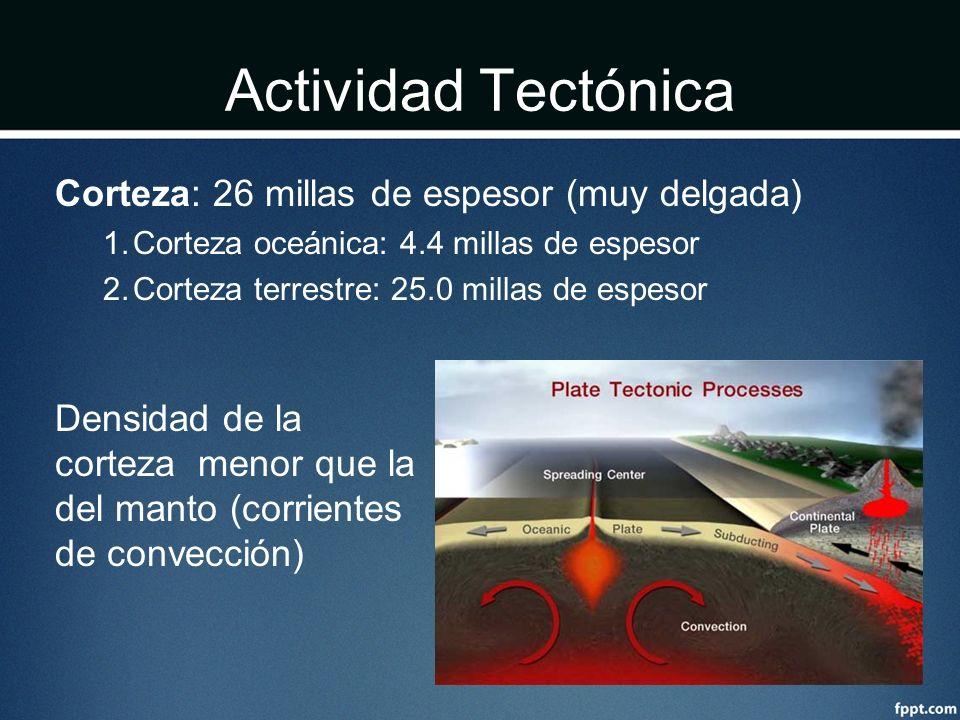Actividad Tectónica Corteza: 26 millas de espesor (muy delgada) 1.Corteza oceánica: 4.4 millas de espesor 2.Corteza terrestre: 25.0 millas de espesor