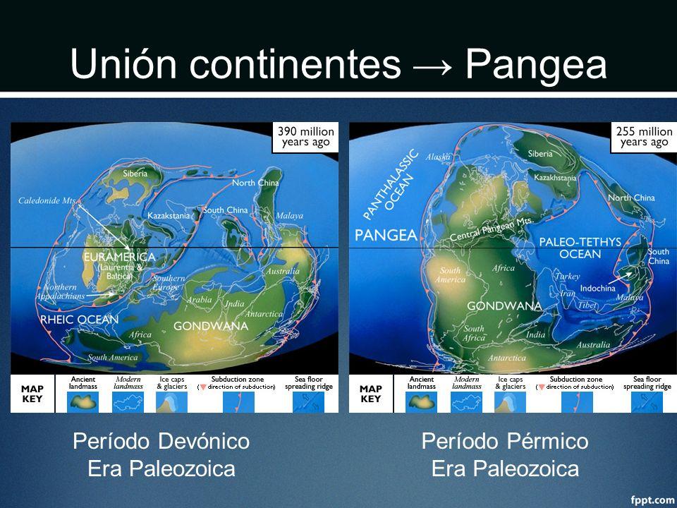 Unión continentes Pangea Período Devónico Era Paleozoica Período Pérmico Era Paleozoica