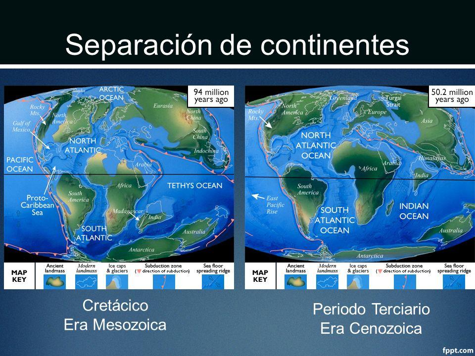 Separación de continentes Cretácico Era Mesozoica Periodo Terciario Era Cenozoica