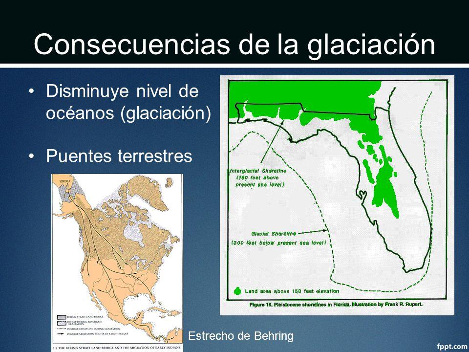Consecuencias de la glaciación Disminuye nivel de océanos (glaciación) Puentes terrestres Estrecho de Behring