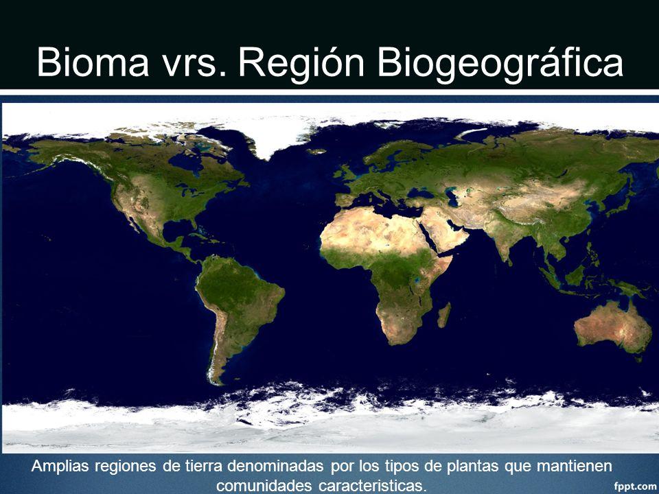 Bioma vrs. Región Biogeográfica Amplias regiones de tierra denominadas por los tipos de plantas que mantienen comunidades caracteristicas.