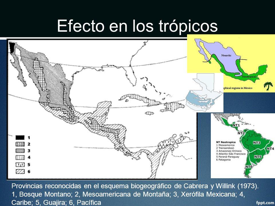 Efecto en los trópicos Provincias reconocidas en el esquema biogeográfico de Cabrera y Willink (1973). 1, Bosque Montano; 2, Mesoamericana de Montaña;