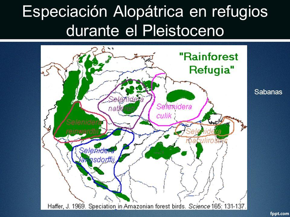 Especiación Alopátrica en refugios durante el Pleistoceno Sabanas