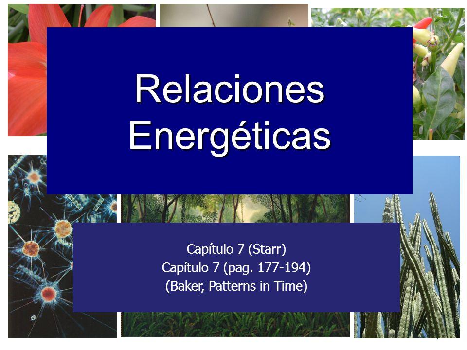 1 Relaciones Energéticas Capítulo 7 (Starr) Capítulo 7 (pag. 177-194) (Baker, Patterns in Time)