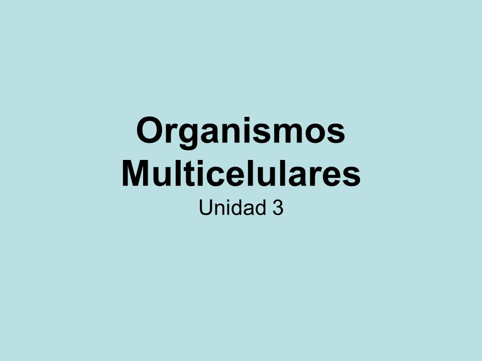 Unicelulares Organismos formados por una sola célula.