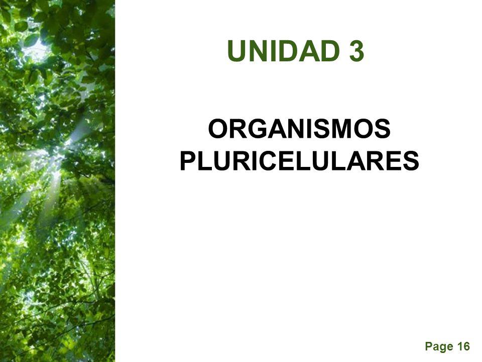 Page 16 ORGANISMOS PLURICELULARES UNIDAD 3