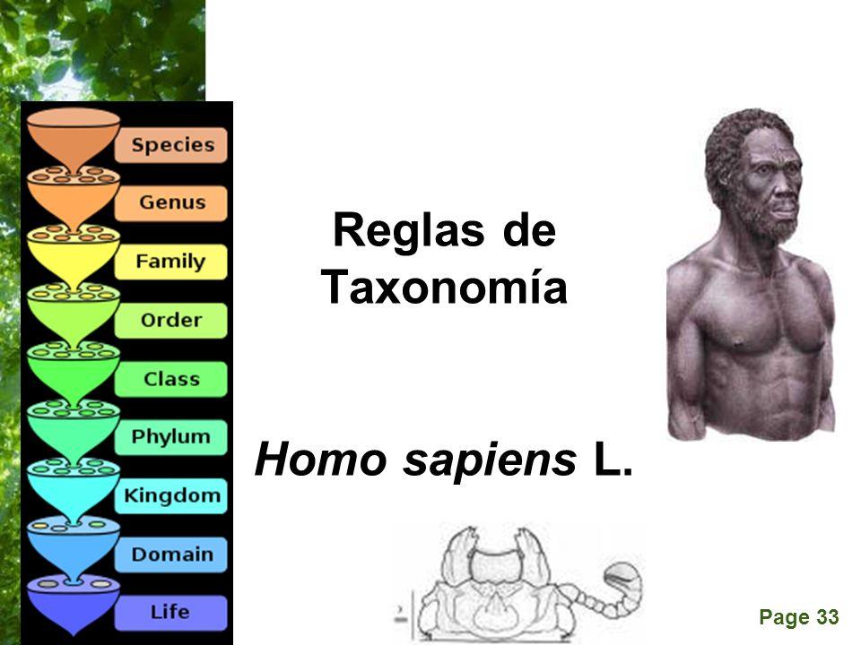 Page 33 Reglas de Taxonomía Homo sapiens L. Passalus interruptus (L.)