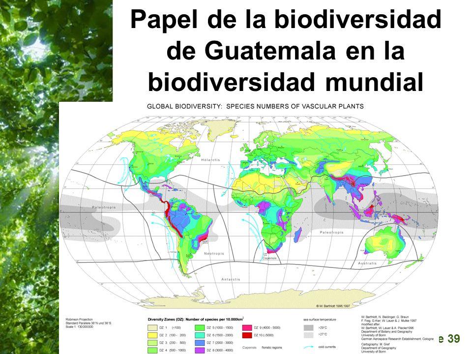 Page 39 Papel de la biodiversidad de Guatemala en la biodiversidad mundial