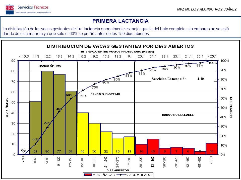 MVZ MC LUIS ALONSO RUIZ JUÁREZ PRIMERA LACTANCIA La distribución de las vacas gestantes de 1ra lactancia normalmente es mejor que la del hato completo, sin embargo no se está dando de esta manera ya que solo el 60% se preñó antes de los 150 días abiertos.