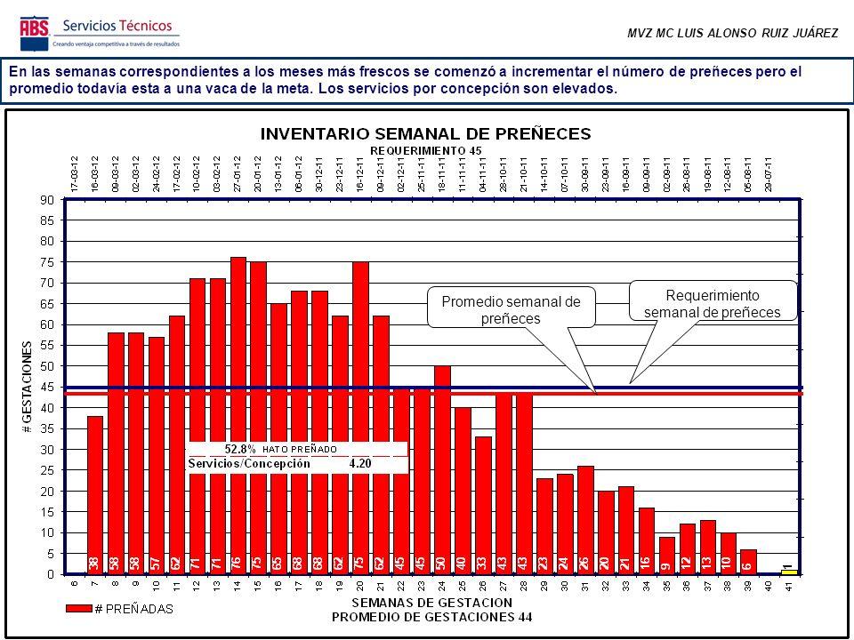MVZ MC LUIS ALONSO RUIZ JUÁREZ La tasa de preñez de los primeros ciclos (los más importantes) es baja, lo cual implica que las vacas están tardando en preñarse un poco más de lo deseable (respecto a sus días en leche).