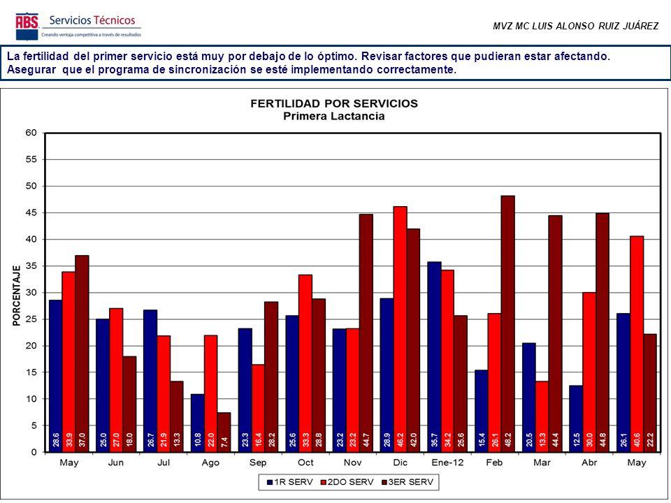 MVZ MC LUIS ALONSO RUIZ JUÁREZ En los dos últimos meses el 1er servicio ha caído exageradamente.
