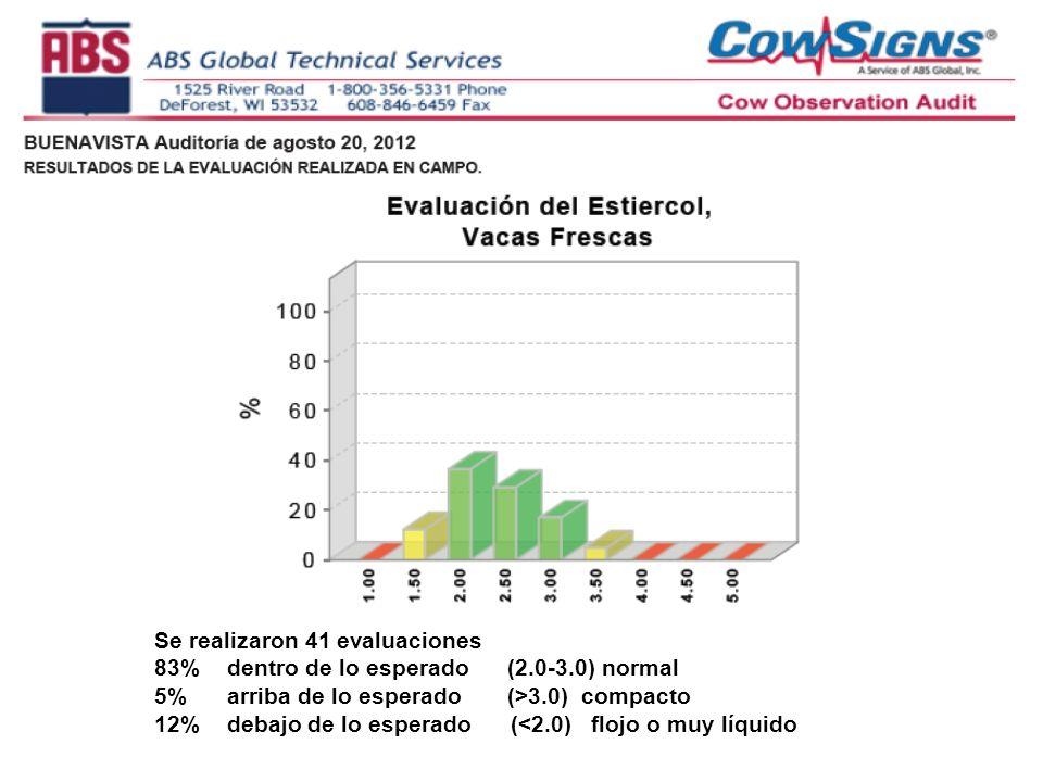 Se realizaron 41 evaluaciones 83% dentro de lo esperado (2.0-3.0) normal 5% arriba de lo esperado (>3.0) compacto 12% debajo de lo esperado (<2.0) flojo o muy líquido