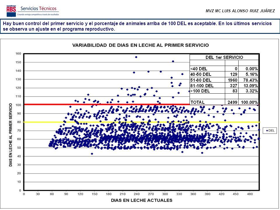 MVZ MC LUIS ALONSO RUIZ JUÁREZ Hay buen control del primer servicio y el porcentaje de animales arriba de 100 DEL es aceptable. En los últimos servici