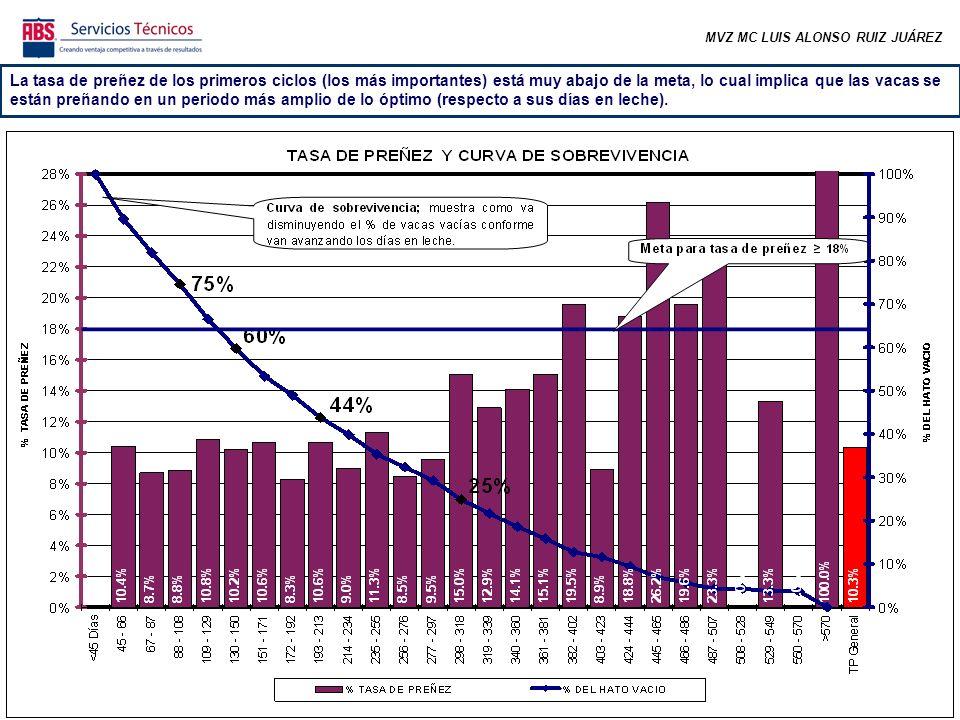 MVZ MC LUIS ALONSO RUIZ JUÁREZ La tasa de preñez de los primeros ciclos (los más importantes) está muy abajo de la meta, lo cual implica que las vacas se están preñando en un periodo más amplio de lo óptimo (respecto a sus días en leche).