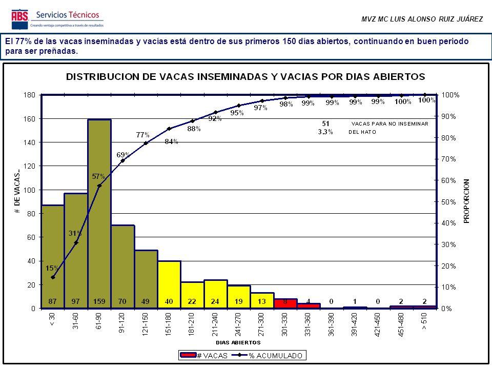 MVZ MC LUIS ALONSO RUIZ JUÁREZ El 77% de las vacas inseminadas y vacías está dentro de sus primeros 150 días abiertos, continuando en buen periodo para ser preñadas.