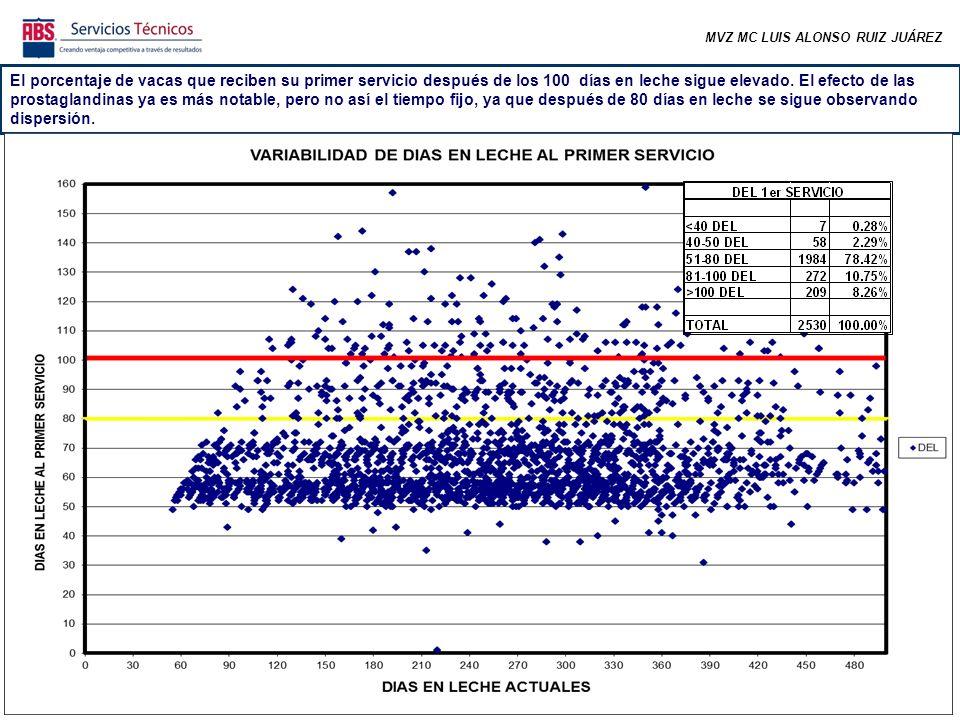 MVZ MC LUIS ALONSO RUIZ JUÁREZ El porcentaje de vacas que reciben su primer servicio después de los 100 días en leche sigue elevado.