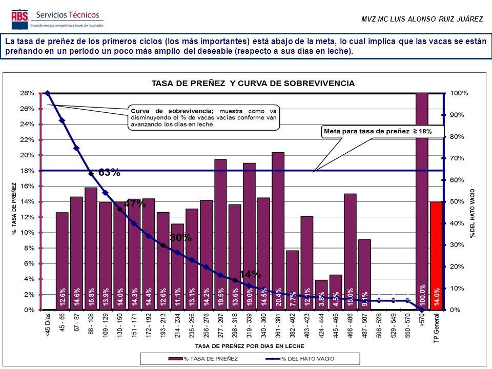 MVZ MC LUIS ALONSO RUIZ JUÁREZ La tasa de preñez de los primeros ciclos (los más importantes) está abajo de la meta, lo cual implica que las vacas se están preñando en un periodo un poco más amplio del deseable (respecto a sus días en leche).
