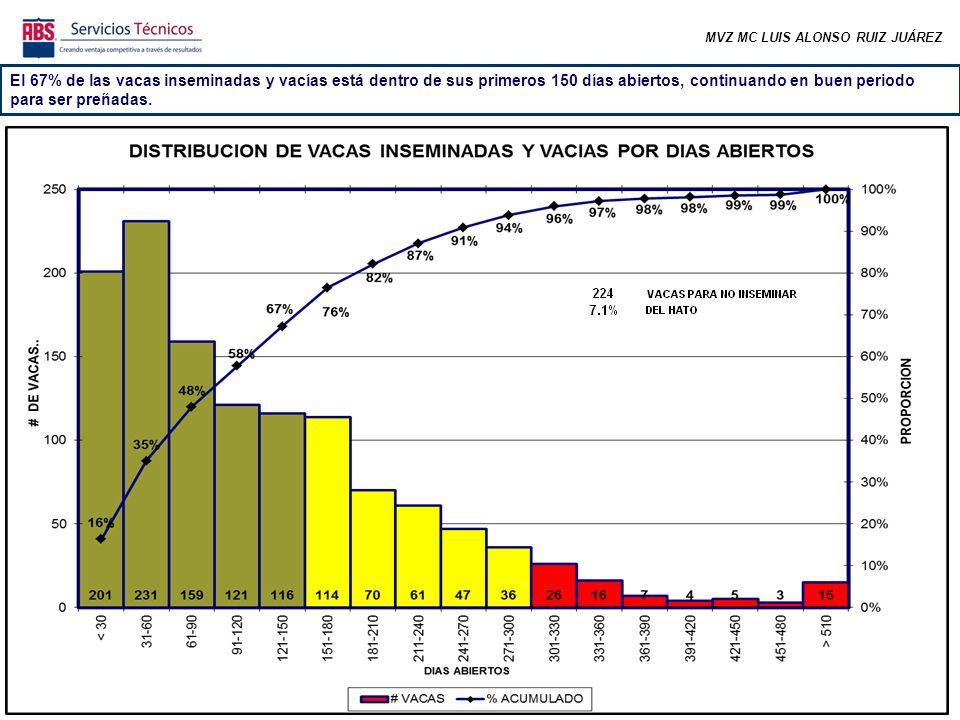 MVZ MC LUIS ALONSO RUIZ JUÁREZ El 67% de las vacas inseminadas y vacías está dentro de sus primeros 150 días abiertos, continuando en buen periodo para ser preñadas.