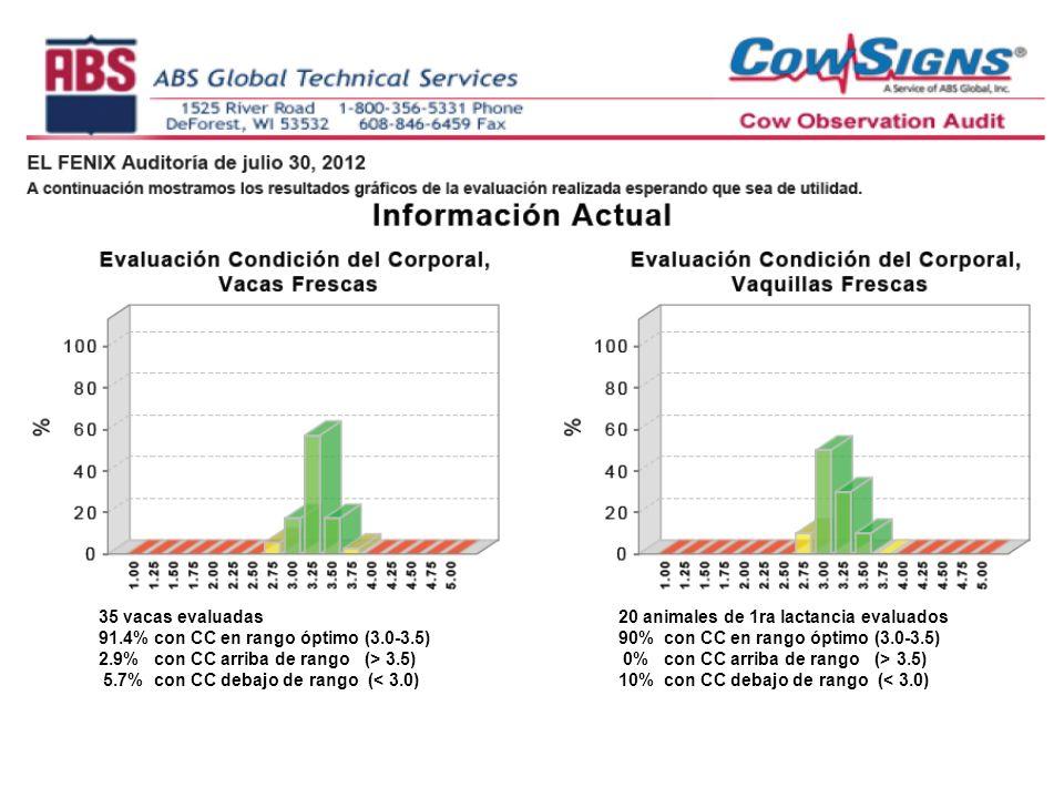 35 vacas evaluadas 91.4% con CC en rango óptimo (3.0-3.5) 2.9% con CC arriba de rango (> 3.5) 5.7% con CC debajo de rango (< 3.0) 20 animales de 1ra lactancia evaluados 90% con CC en rango óptimo (3.0-3.5) 0% con CC arriba de rango (> 3.5) 10% con CC debajo de rango (< 3.0)