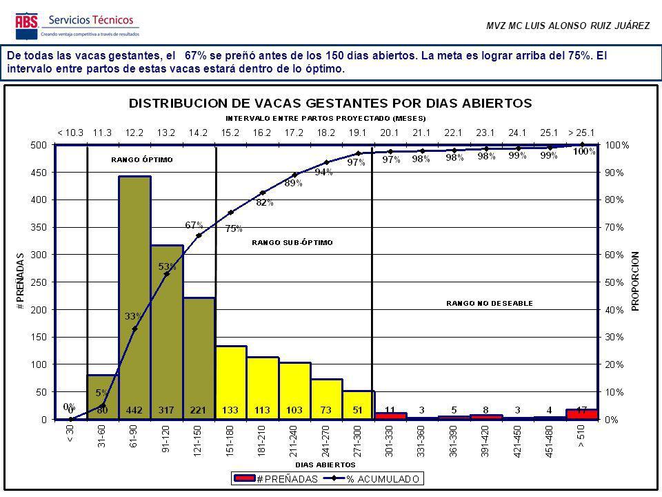 MVZ MC LUIS ALONSO RUIZ JUÁREZ De todas las vacas gestantes, el 67% se preñó antes de los 150 días abiertos.