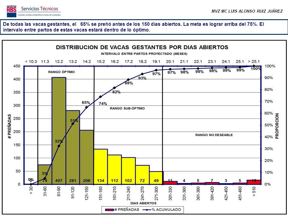 MVZ MC LUIS ALONSO RUIZ JUÁREZ De todas las vacas gestantes, el 65% se preñó antes de los 150 días abiertos.
