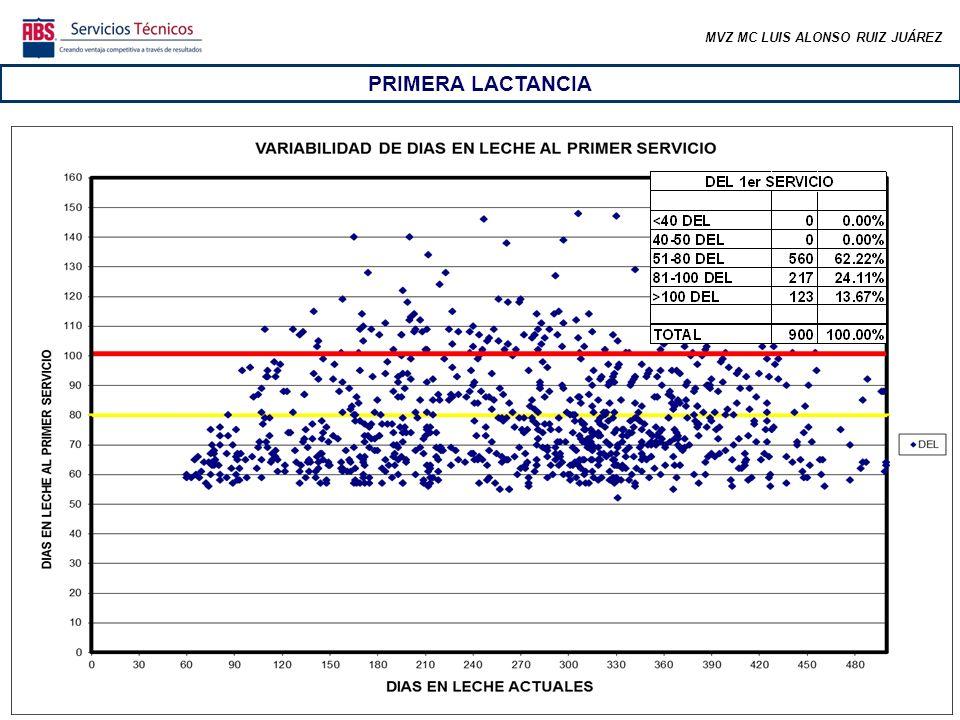 MVZ MC LUIS ALONSO RUIZ JUÁREZ PRIMERA LACTANCIA En los primeros ciclos (los más importantes) no se alcanza la meta de tasa de preñez, aun cuando se espera que este grupo de animales se comporte mejor.