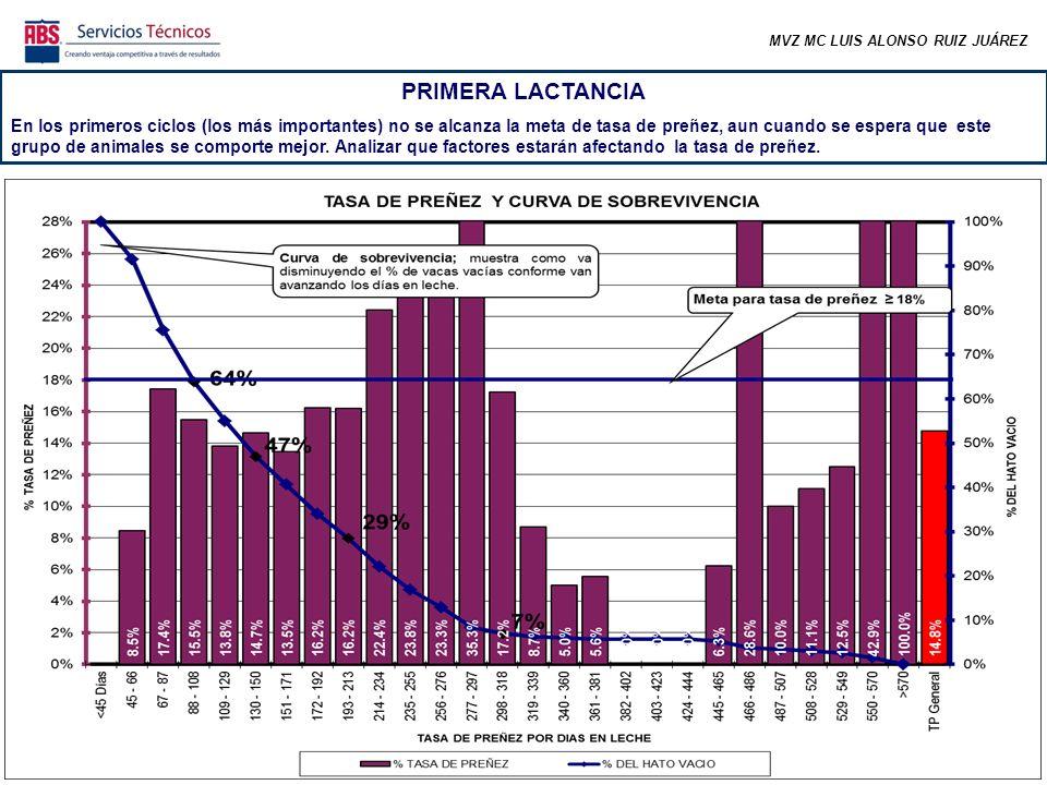 MVZ MC LUIS ALONSO RUIZ JUÁREZ PRIMERA LACTANCIA La distribución por días abiertos de los animales gestantes de 1ra lactancia no está dentro de lo esperado ya que mínimo se debe preñar un 75% antes de los 150 días abiertos.
