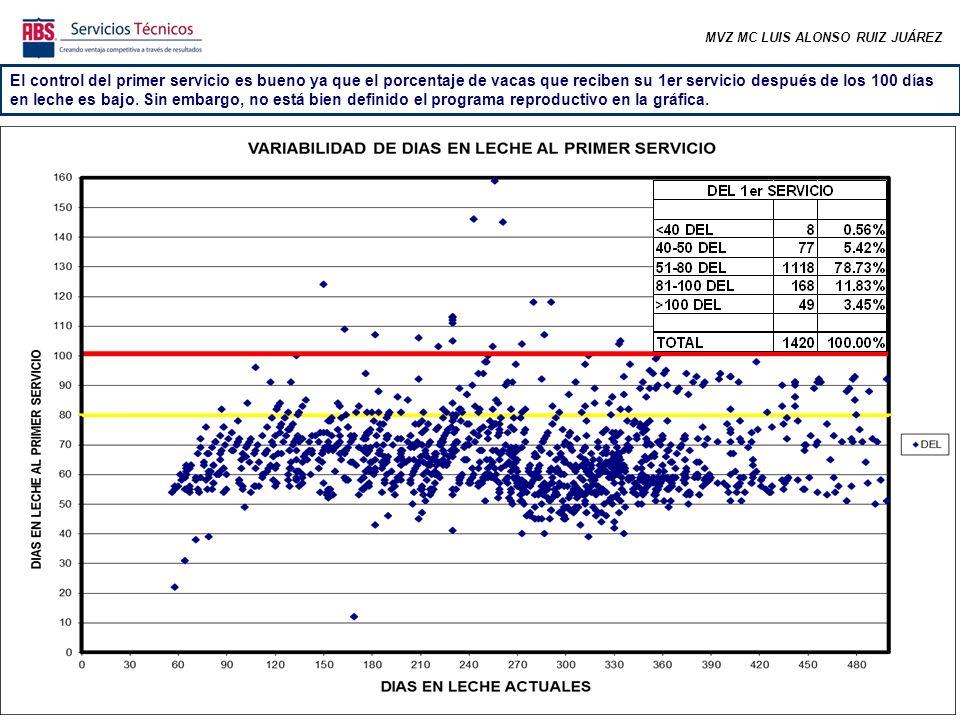 MVZ MC LUIS ALONSO RUIZ JUÁREZ En las últimas semanas ha bajado el numero de preñeces (efecto estacional) pero se ha mantenido estable, incluso en las 3 últimas semanas se nota una mejora.