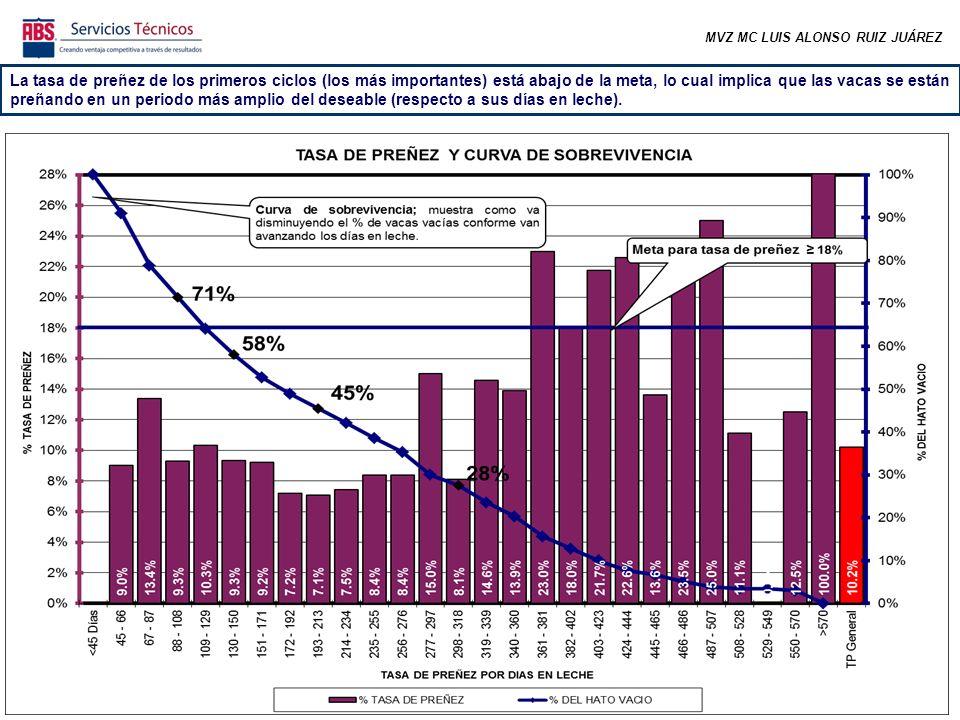 MVZ MC LUIS ALONSO RUIZ JUÁREZ La tasa de preñez de los primeros ciclos (los más importantes) está abajo de la meta, lo cual implica que las vacas se están preñando en un periodo más amplio del deseable (respecto a sus días en leche).