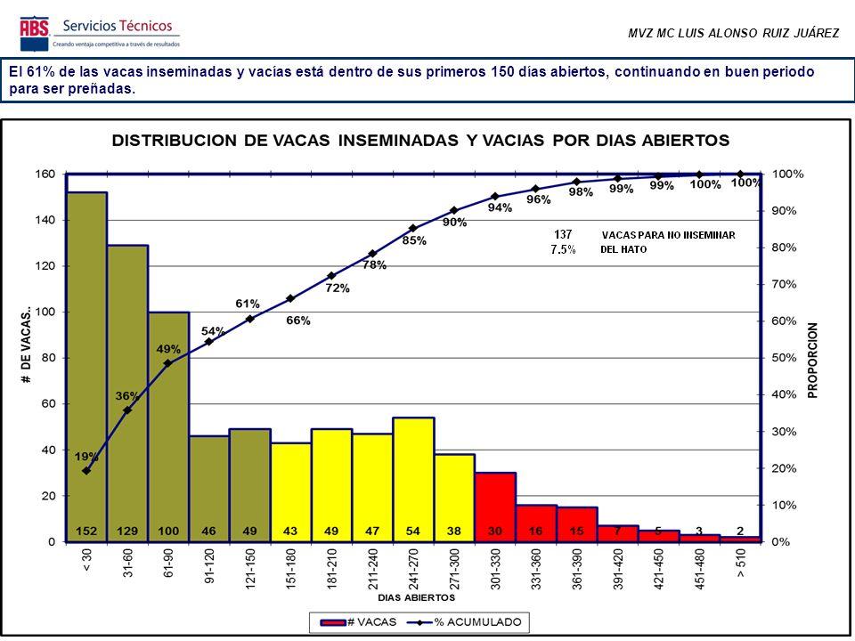 MVZ MC LUIS ALONSO RUIZ JUÁREZ El 61% de las vacas inseminadas y vacías está dentro de sus primeros 150 días abiertos, continuando en buen periodo para ser preñadas.
