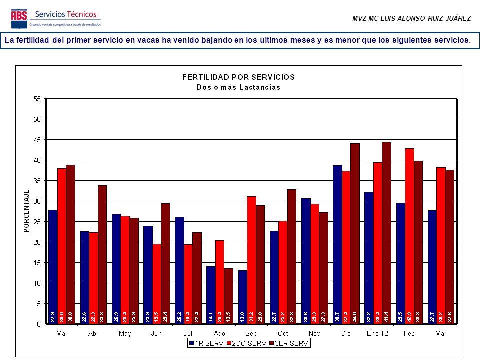 MVZ MC LUIS ALONSO RUIZ JUÁREZ La fertilidad del primer servicio en vacas ha venido bajando en los últimos meses y es menor que los siguientes servicios.