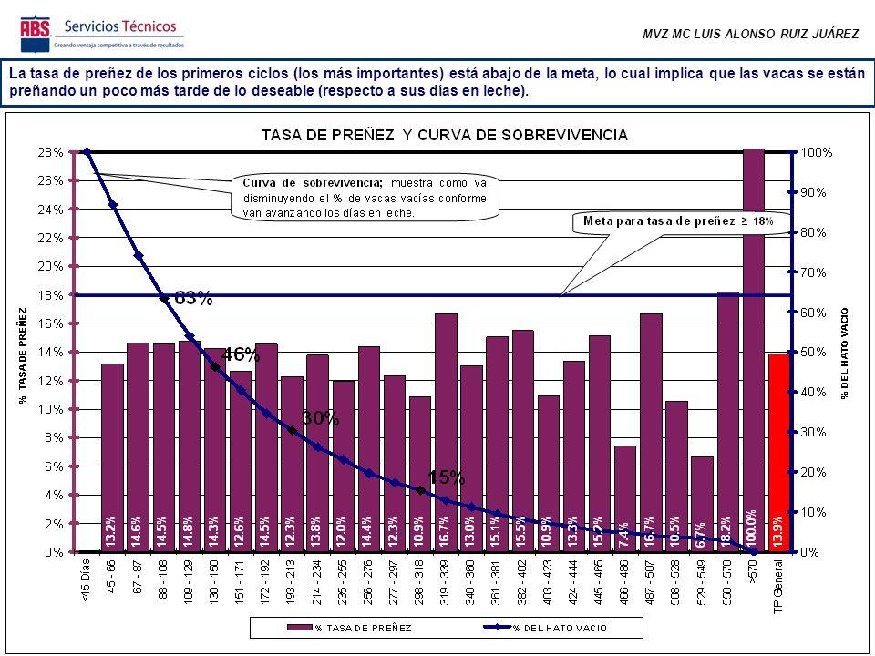 MVZ MC LUIS ALONSO RUIZ JUÁREZ La tasa de preñez de los primeros ciclos (los más importantes) está abajo de la meta, lo cual implica que las vacas se están preñando un poco más tarde de lo deseable (respecto a sus días en leche).