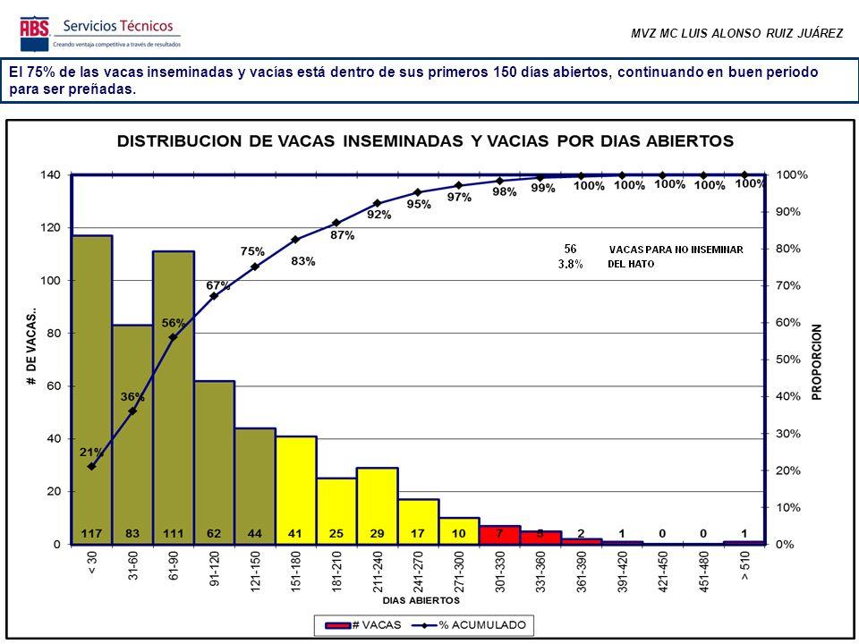 MVZ MC LUIS ALONSO RUIZ JUÁREZ El 75% de las vacas inseminadas y vacías está dentro de sus primeros 150 días abiertos, continuando en buen periodo para ser preñadas.